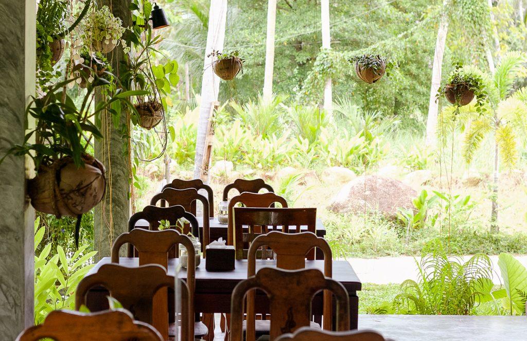 wonderland healing center in koh phangan