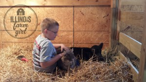 We may not be a livestock farm, but my farm boy is learning to care for the orphan calves from my dad's small herd.