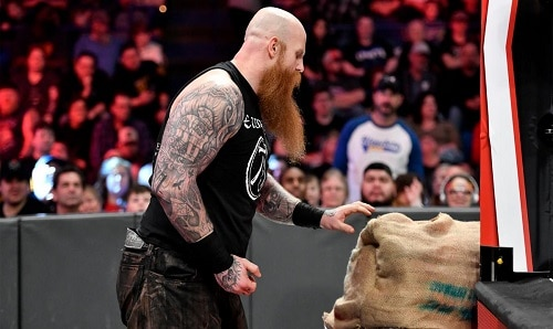 WWE Erick Rowan Cage
