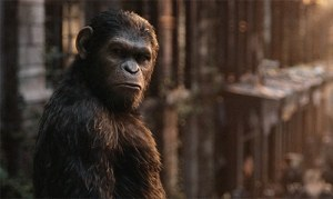 no planet of the apes reboot