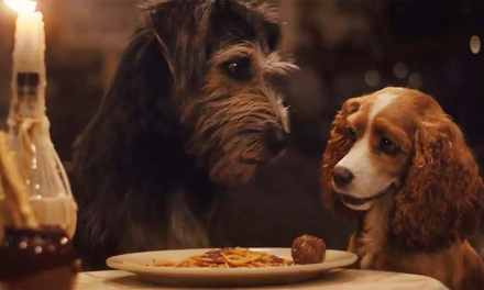 Lady And The Tramp On Disney+ Review: More Story, Less Charm