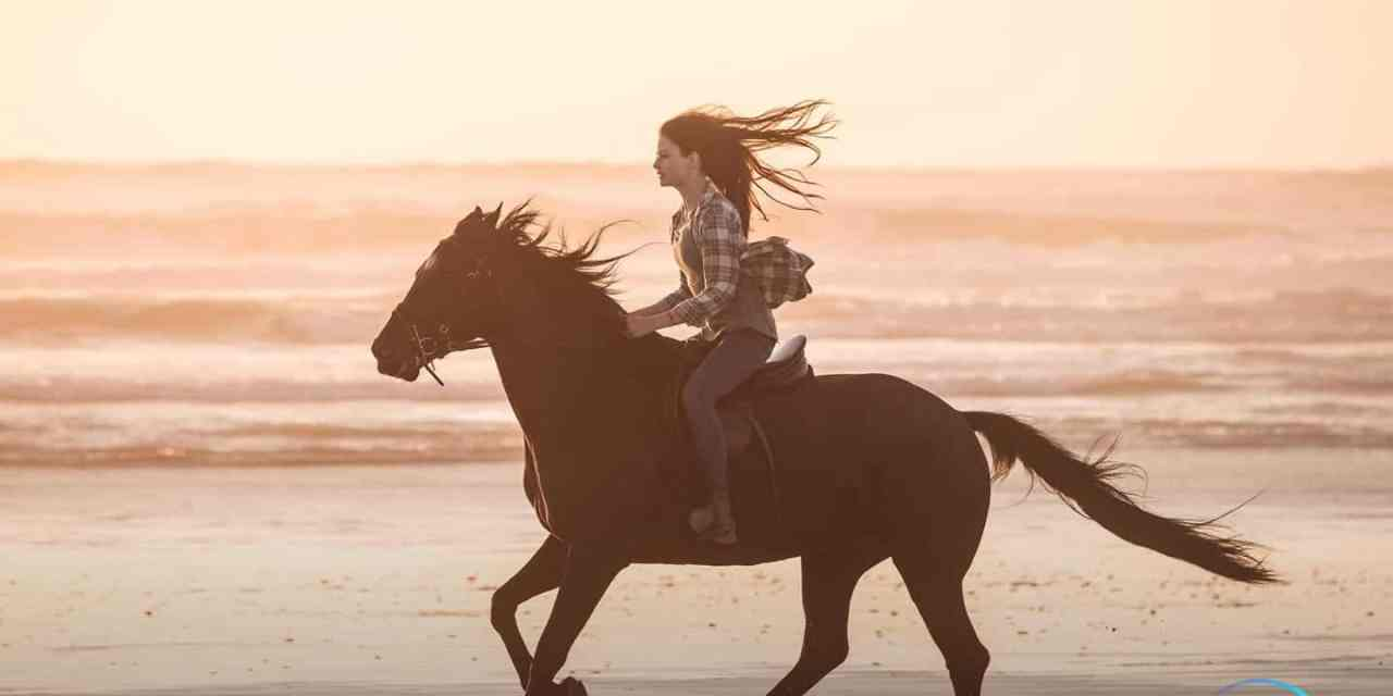 The New Trailer For Black Beauty Coming To Disney+ Hits Its Stride