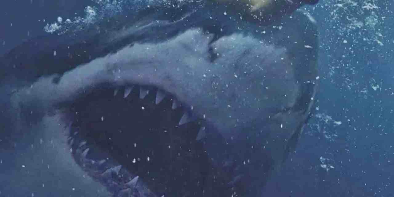 Great White Movie Review: Innocuous Shark Movie Lacks Bite