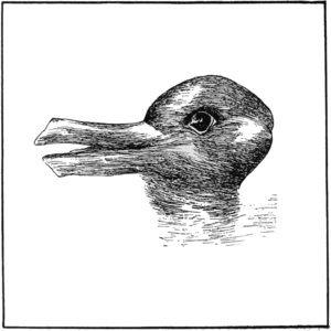 Duck or Rabbit?