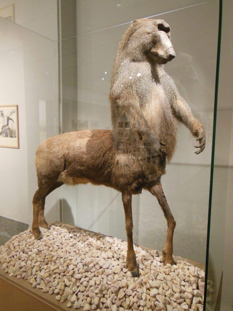 Konstmuseet, Centaur, Museum, Gothenburg, Sweden