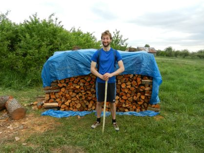 A magnificent woodpile