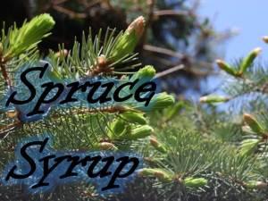 Spruce Syrup
