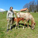 Workaway farm, Croatia