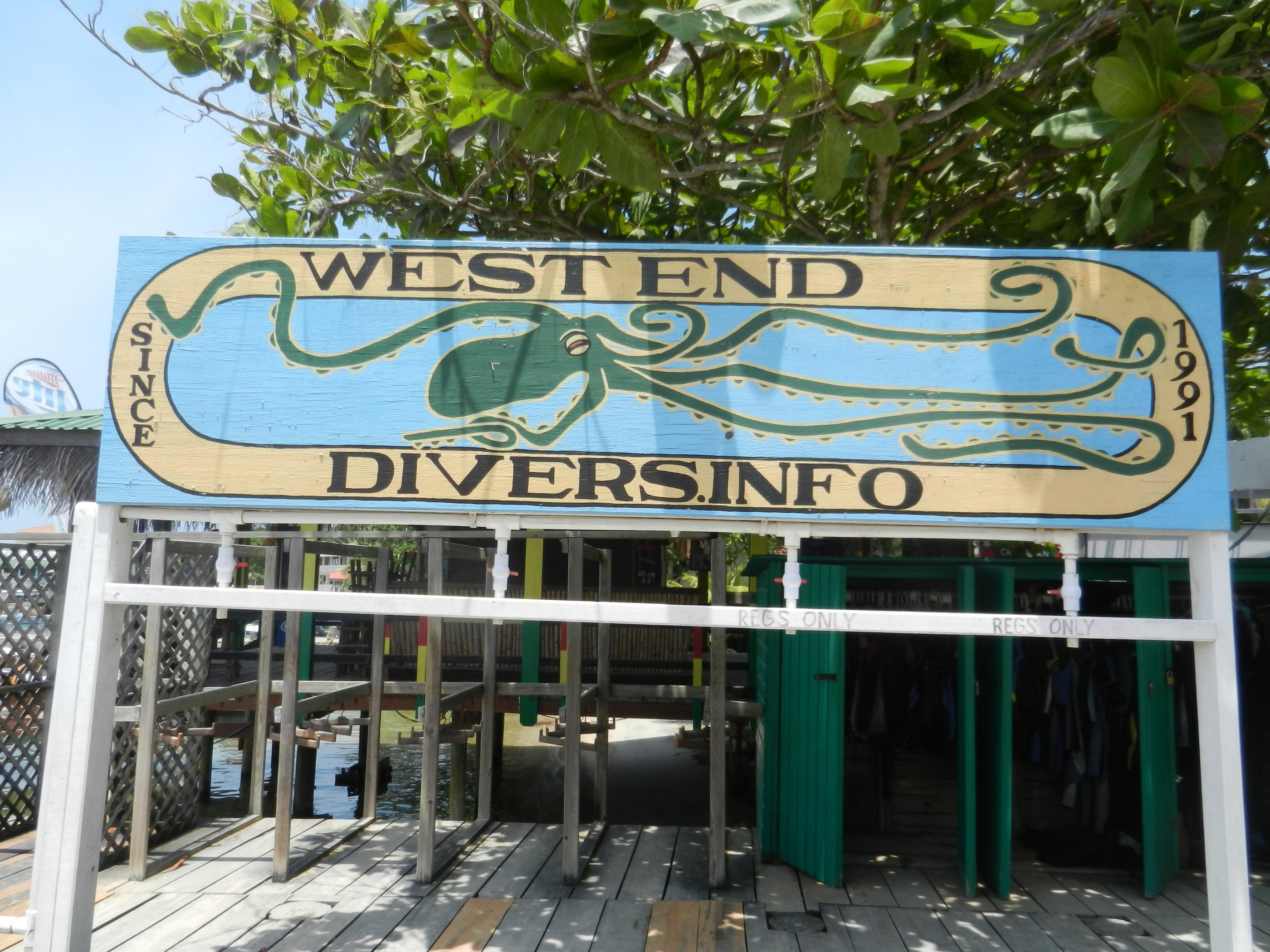 Divemaster Training In Roatan
