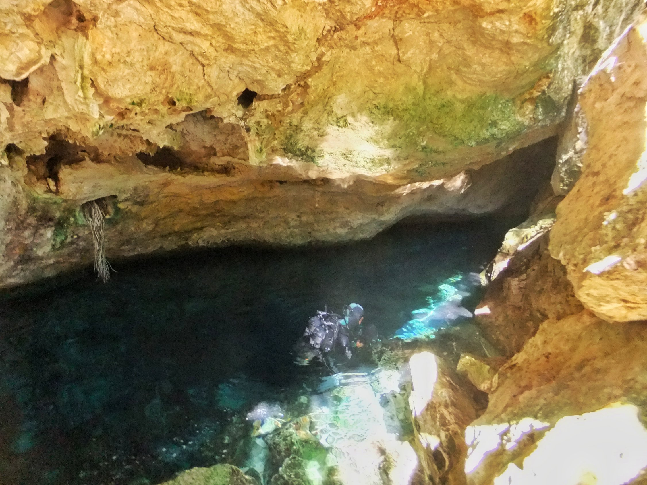 Cenote Diving In Playa Del Carmen