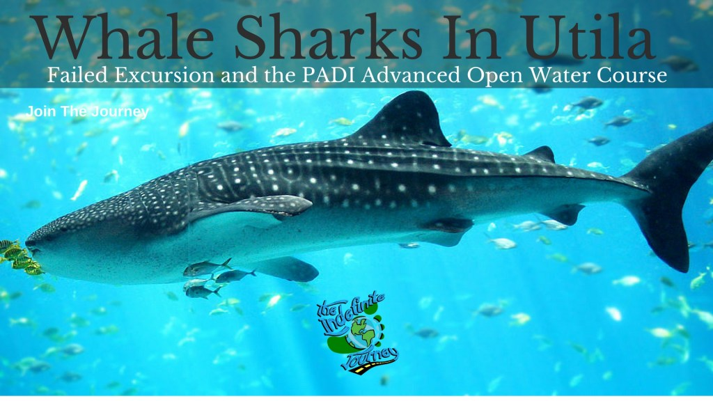 Whale Sharks In Utila - Failed Excursion and the PADI Advanced Open Water Course
