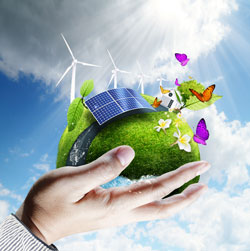 Capital Subsidy for Environment Friendly Technologies: Tamil