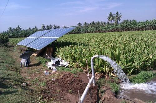 TN Govt to provide solar pump sets with 90% subsidy for agriculture