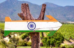 consommation de vin en inde : un marché prometteur qui met du temps a décoller