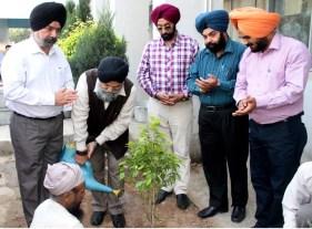 V C Saab Planting Tree
