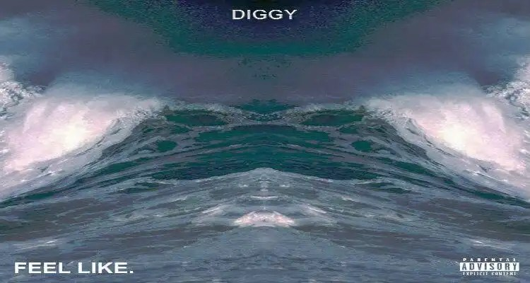 Diggy - FEEL LIKE