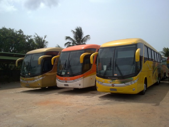 the-young-shall-grow-motors-terminals-in-lagos-and-their-contact-details