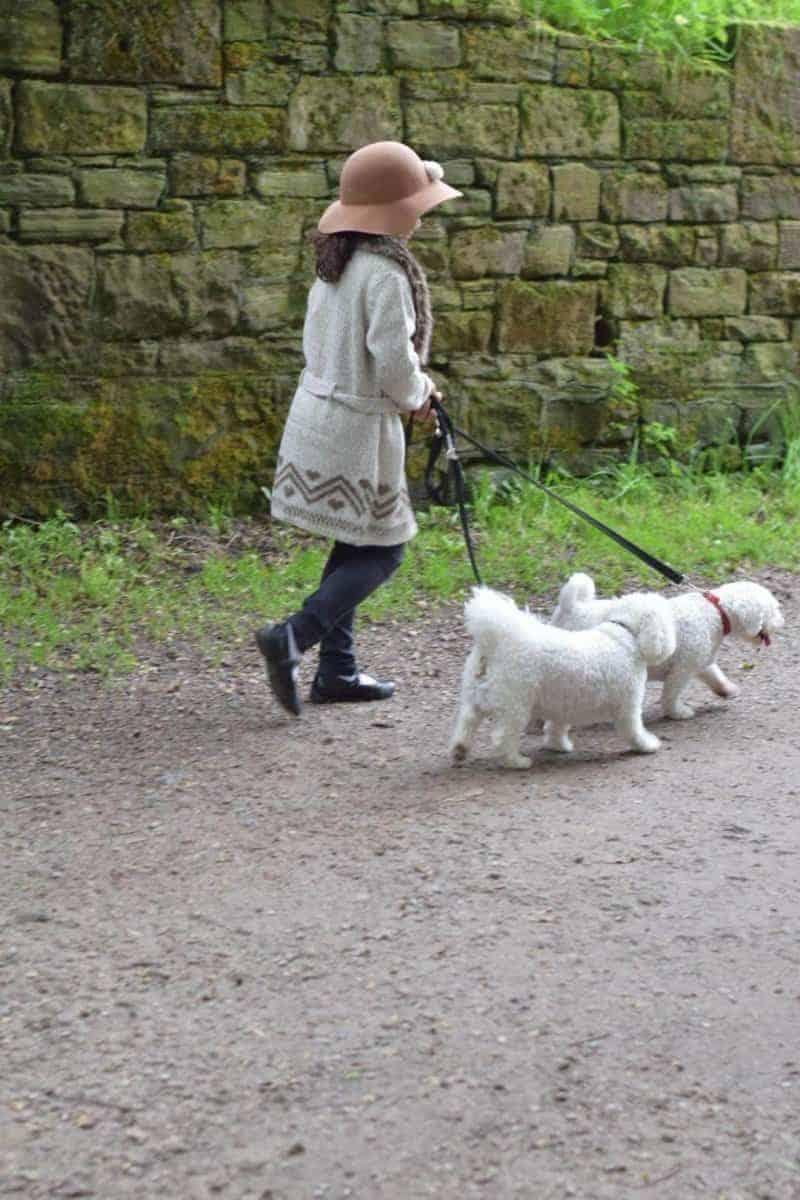 girl and bichon dog