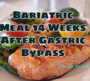 Bariatric Meal