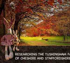 Tushingham family of cheshire and staffordshire