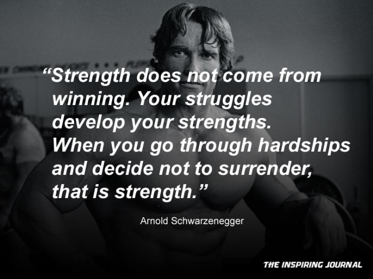 arnold schwarzenegger quotes about life success