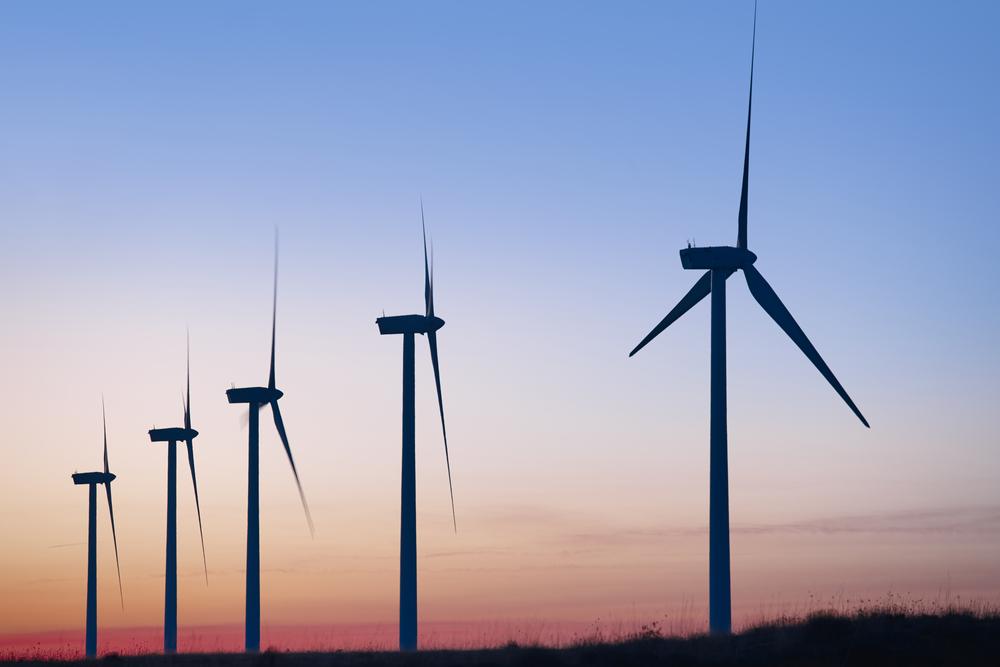 National Grid declares 2017 'greenest summer ever'