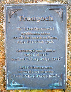 The Field where the Northern part of the Frongoch Internment Camp was located - The Irish Place