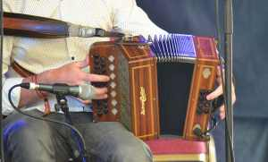 The Button Accordion - The Irish Place