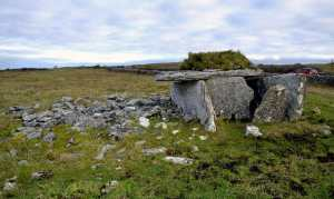 Parknabinnia Wedge Tomb on Roughan Hill - The Irish Place