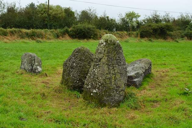 Knockboy Stone Row from a South Westerly direction - The Irish Place