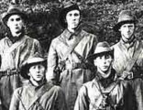 Irish Volunteers,