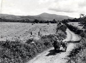 A scene from rural Ireland in the early 1900s.
