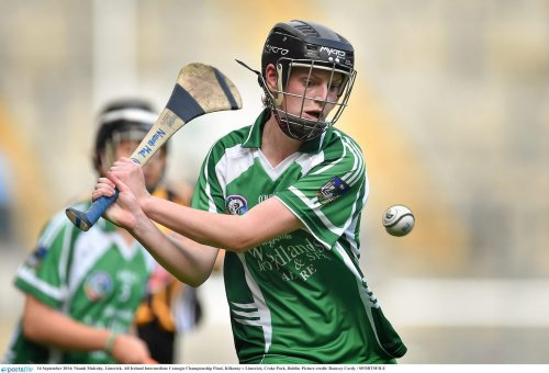 All Ireland camogie champions defeated by Limerick