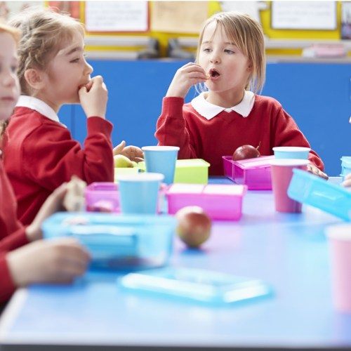 School packed lunches deemed unhealthy