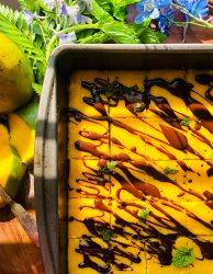 dark chocolate mango bars chocolate drizzle