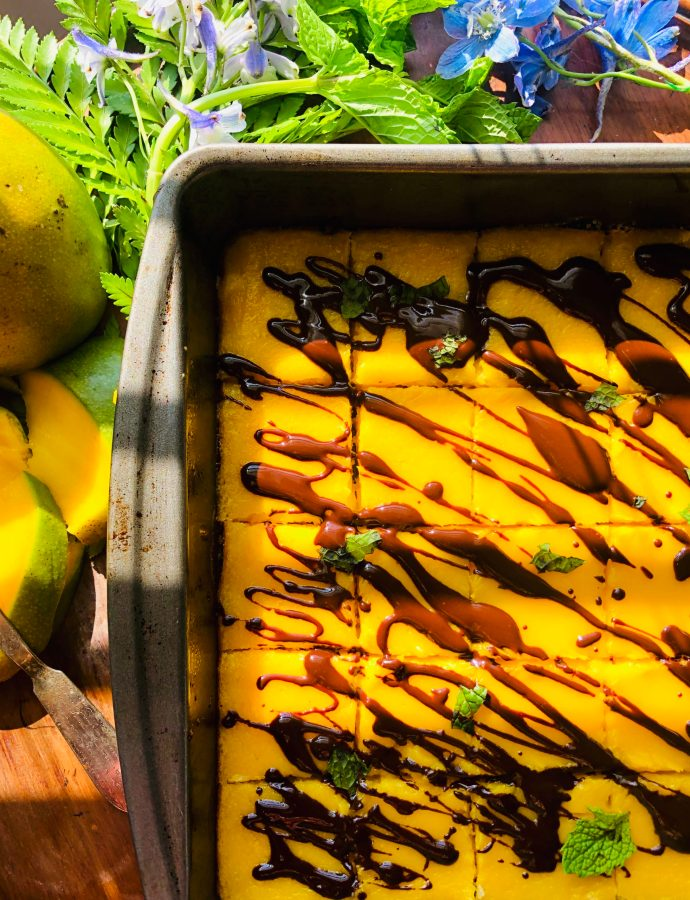Dark Chocolate Mango Bars