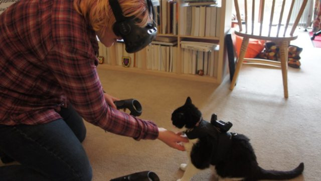 The First Cat to Wear a VR Tracker (to avoid being sat on)