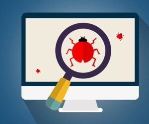 You can Earn Up to $30,000 by Discovering a Bug