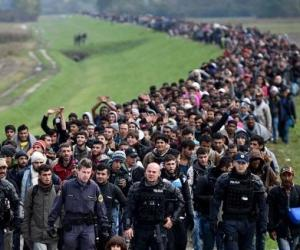 europe commits suicide mass migration