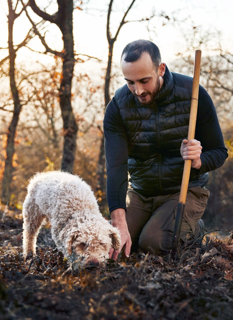Truffle Hunting In The Roman Countryside