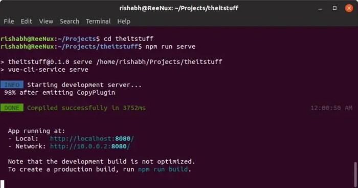 vuejs npm server