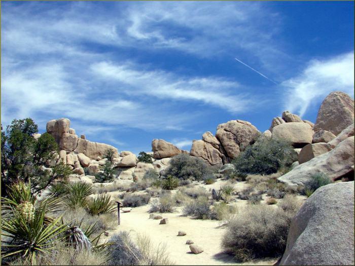 Hidden Valley, Joshua Tree NP 4-13-13