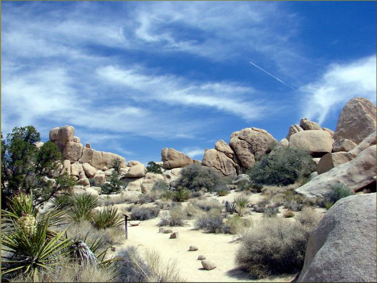 Hidden Valley, Joshua Tree NP 4-13-13