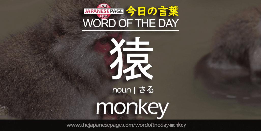 Beginner Word of the Day – 猿 [monkey]