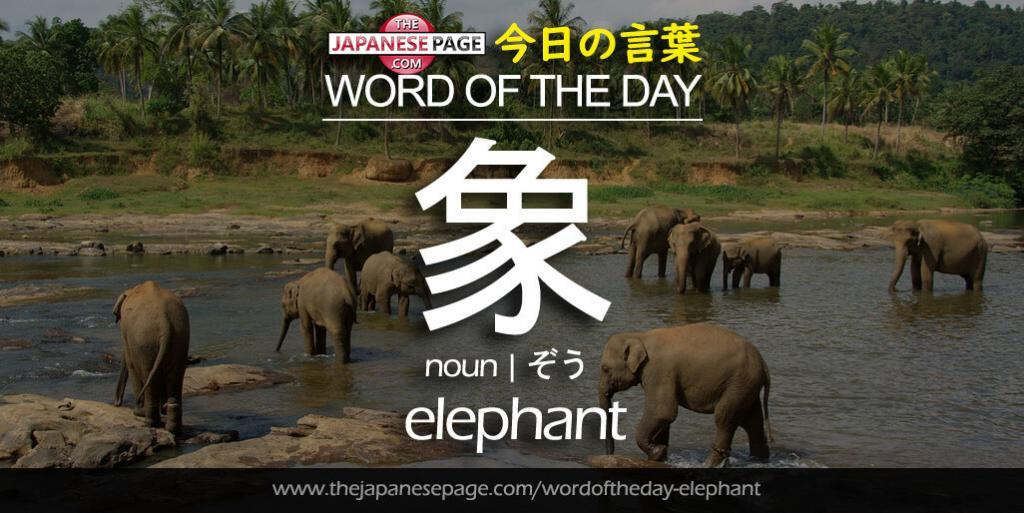 The Japanese Page Word of The Day - Elephant