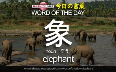 Beginner Word of the Day – 象 [elephant]