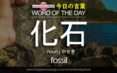 Advanced Word of the Day – 化石 [fossil]