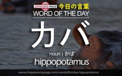 Beginner Word of the Day – カバ [hippopotamus]