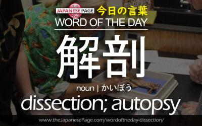 Advanced Word of the Day – 解剖 [dissection; autopsy]