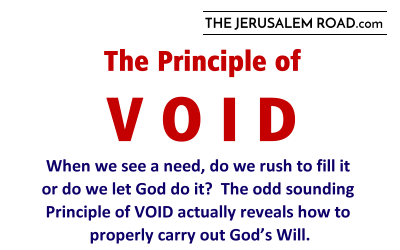 The Principle of VOID